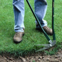 Lawn Care West Norwood
