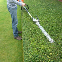 Garden Maintenance West Norwood